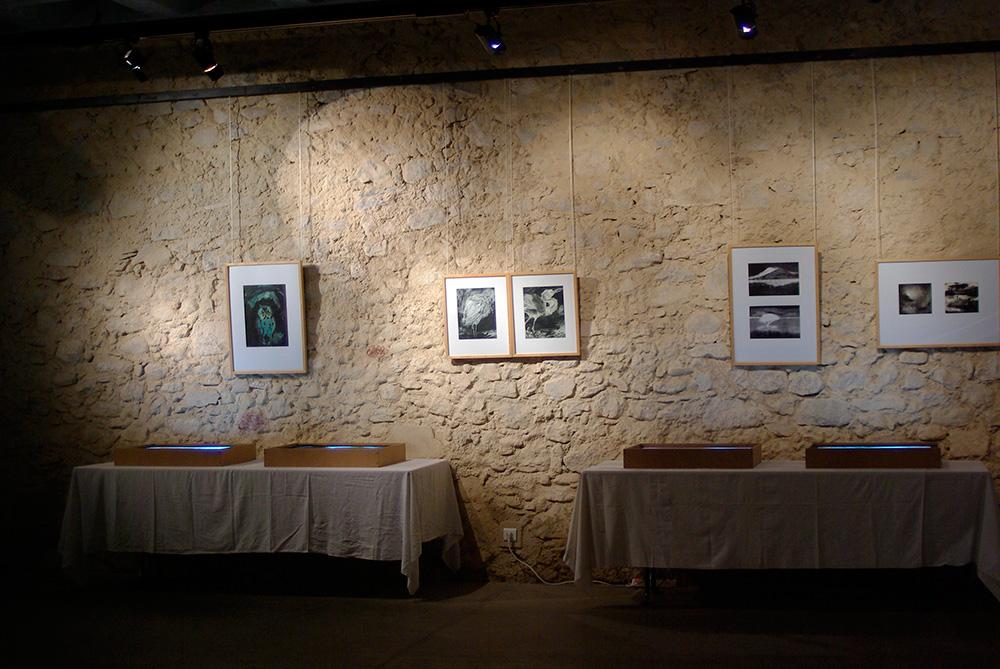 Exposition d'Irène Bonacina à la Fondation Carzou de Manosque