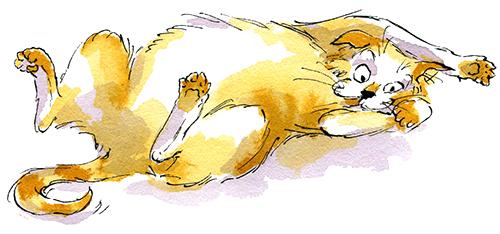 Le chat de la Petite Vieille, illustration d'Irène Bonacina pour