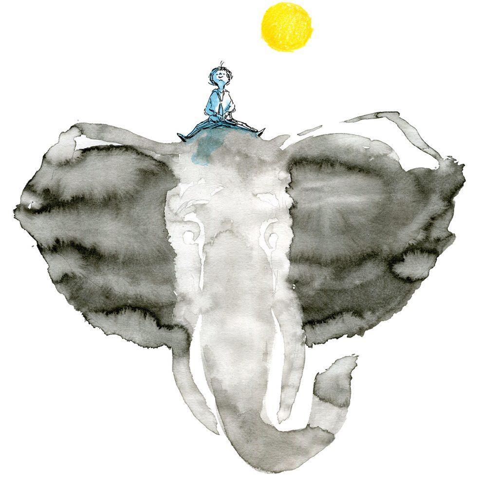 Roman jeunesse première lecture, de Nicolas Deleau et Irène Bonacina, Les Éditions des Éléphants, Histoire d'amitié entre un petit garçon et un éléphant, 2019
