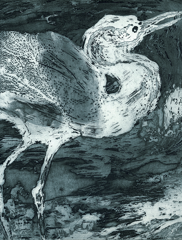 Série d'oiseaux, gravures à l'eau forte, en linogravure, et monotypes, d'Irène Bonacina réalisés à l'école VSVU (Beaux-Arts) de Bratislava (Slovaquie)